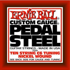 Ernie Ball P02501