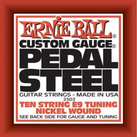 Ernie Ball P02502