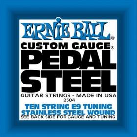 Ernie Ball P02504