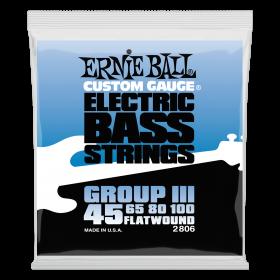 Ernie Ball P02806