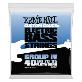 Ernie Ball P02808