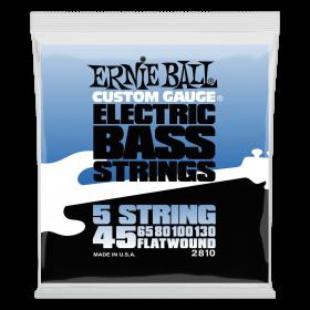 Ernie Ball P02810