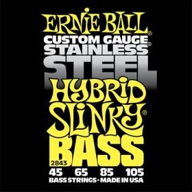 Ernie Ball P02843