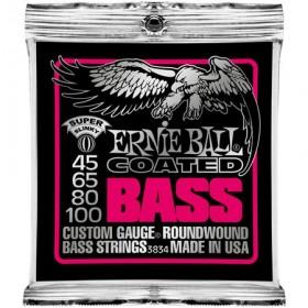 Ernie Ball P03834