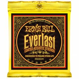 Ernie Ball P02554