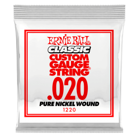 Ernie Ball P01220