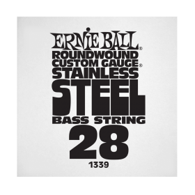 Ernie Ball P01339