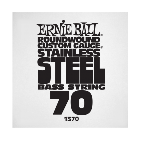 Ernie Ball P01370