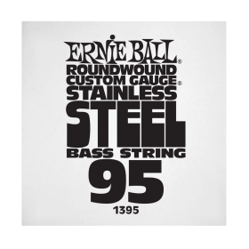 Ernie Ball P01395