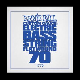 Ernie Ball P01770
