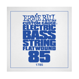 Ernie Ball P01785