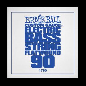 Ernie Ball P01790