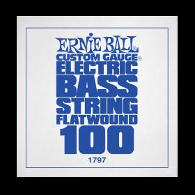 Ernie Ball P01797
