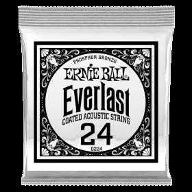 Ernie Ball P10224