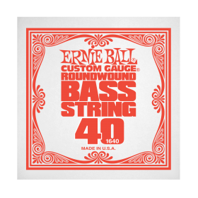 Ernie Ball P01640