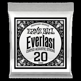 Ernie Ball P10220