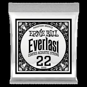 Ernie Ball P10222