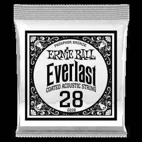 Ernie Ball P10228
