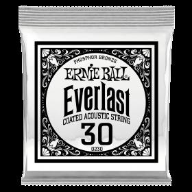 Ernie Ball P10230