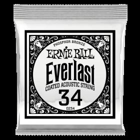 Ernie Ball P10234