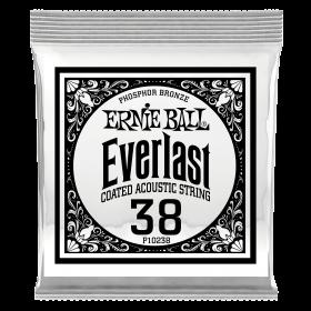 Ernie Ball P10238