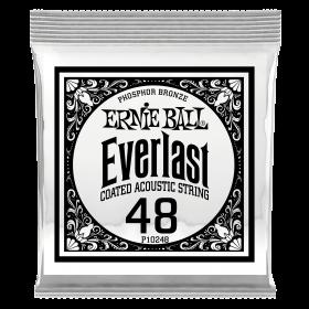Ernie Ball P10248