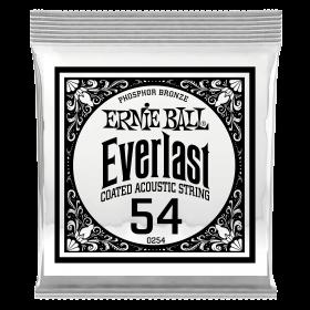 Ernie Ball P10254