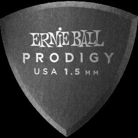 Ernie Ball P09331