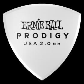 Ernie Ball P09338