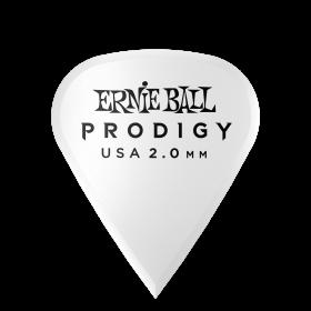 Ernie Ball P09341