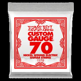 Ernie Ball P01170