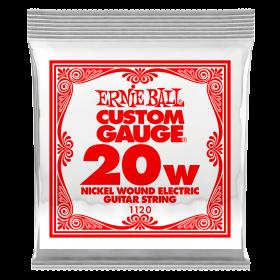 Ernie Ball P01120